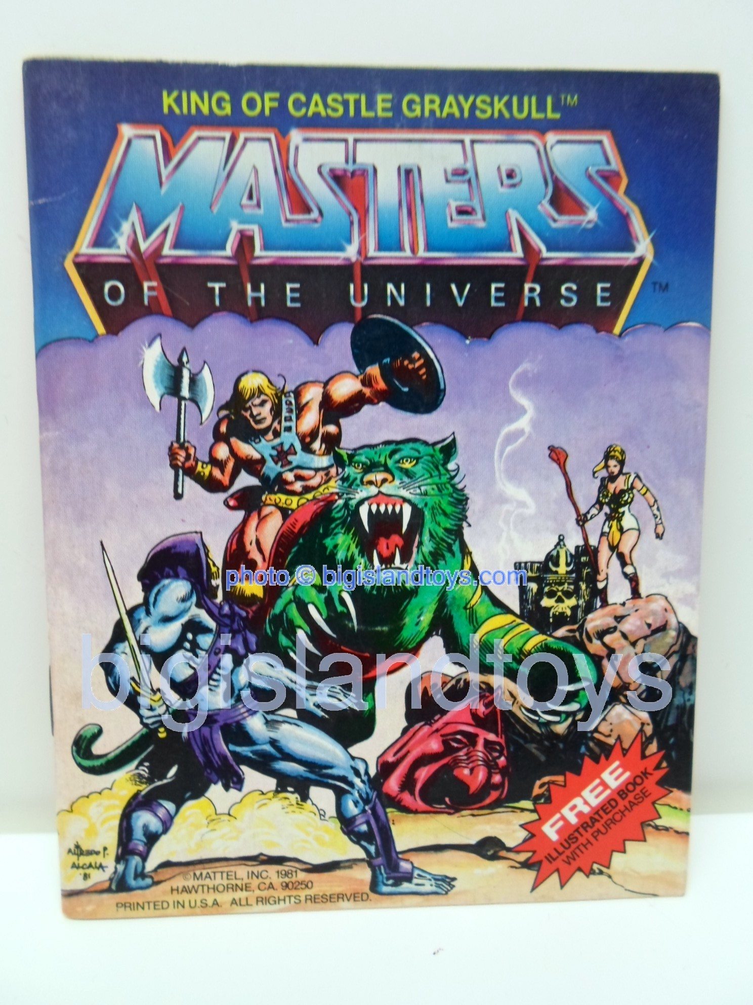 Masters of the Universe Mini Comics   King of Castle Grayskull